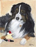 Collie Sal and toy