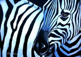 That Zebra Look