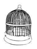 BW Birdcage