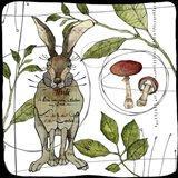Watercolor Woodlands Rabbit