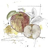 Fall Harvest - Apple