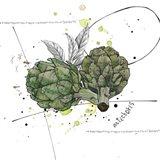 Fall Harvest - Artichoke