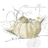Fall Harvest  - Cream Pumpkin 2