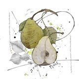 Fall Harvest - Pear