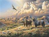 Under Wild Skies