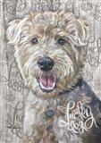 Lucky Dog Welsh Terrier
