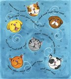 Bouncey Balls Cats and Dogs