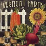 Vermont Farms VIII