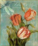 Tulips Ablaze III
