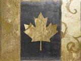 Fashion Flag I