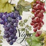 Wines of Paris I