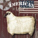 American Wool I