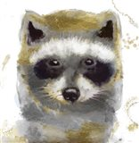 Golden Forest - Raccoon