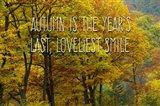 Loveliest Smile