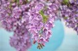 Lilacs in Blue Vase I