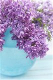 Lilacs in Blue Vase IV
