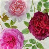 Peonies and Roses V