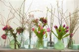 Spring Flowers in Glass Bottles II
