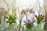 Spring Flowers in Glass Bottles III