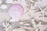 Beach Treasures IV