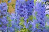 Fluid Flowers I