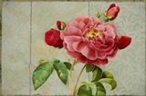 Pink Rose Painted on Wooden Panel