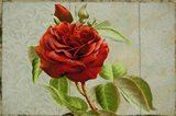 Red Rose Painted on Wooden Panel