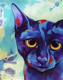 Cameo Cat