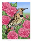 State Birds And Flowers AL