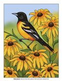 State Birds And Flowers MD