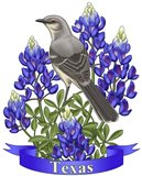State Birds And Flowers TX 2