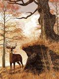Autumn Buck