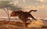 Speeding Cheetah