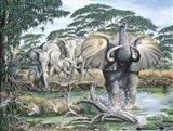 Unrest On The Serengeti