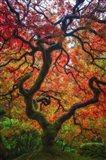 Earthal Tree Alive