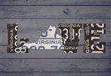 VA State Love