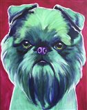 Bottle Green Brussels Griffon