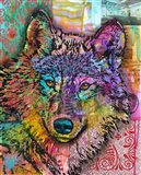 Wolf Lens Eye