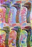 6 Ostriches