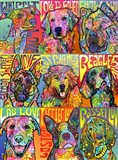Nine Up of Dogs