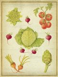 Les Beaux Legumes (The Beautiful Vegetables) Vintage