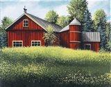 Red Barn Summer 1