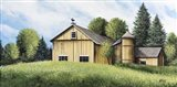 Yellow Barn Summer