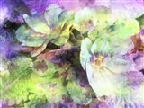 Pink and Green Floral Abstract