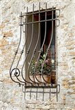 Ornate Window Grill Cetona