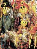 Scarecrow Family