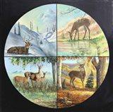 Deer Quadrant