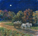 Moonlight Hayride