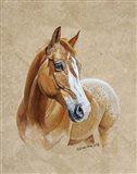 Ruger Horse