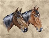 Sanders Horses Feathers
